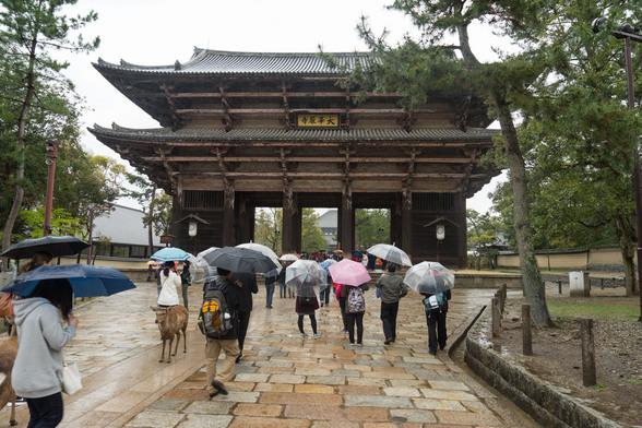 20150410午後の奈良・興福寺〜東大寺A7R-69.jpg