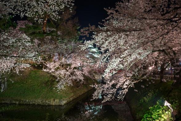 20150423夜の弘前公園A7R-28.jpg