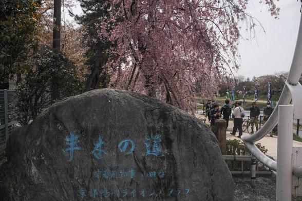 201504昼の京都・半木の道SD1-1.jpg