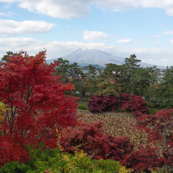 20151101午前の弘前公園CFV50-37.jpg