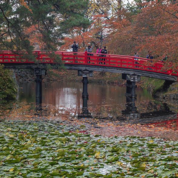 20151101午前の弘前公園CFV50-41.jpg