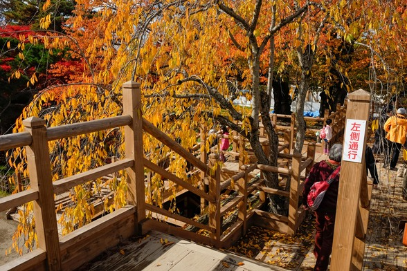 20151103午前の弘前公園XT10-75.jpg